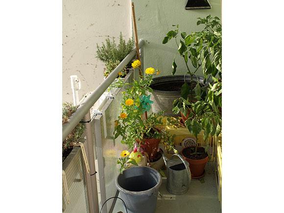 Balkon-1