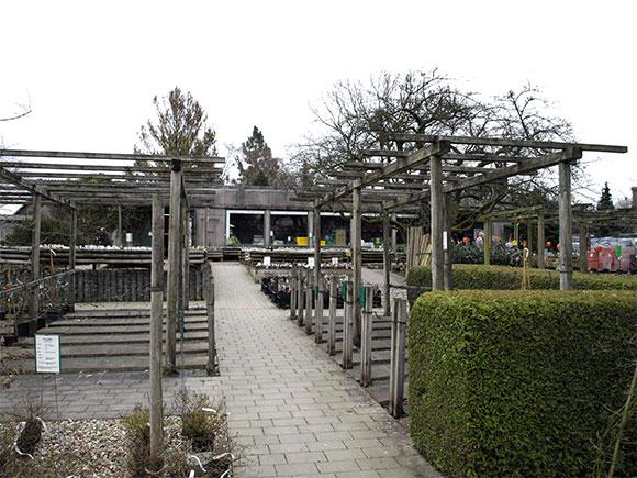 Garten-4